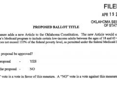 Medicaid expansion ballot initiative